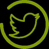 ico-twitter-g